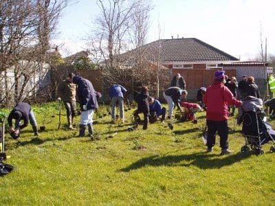 Thornton Action Group Tree Planting