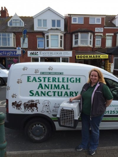Easterleigh animal rescue with the seagull