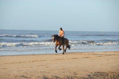 Horseriding on Cleveleys beach